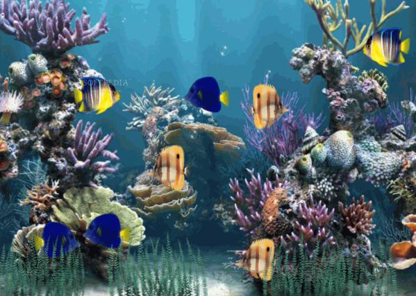 Aquarium wallpaper animated 757453