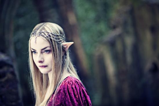 Atelier des elfes 5