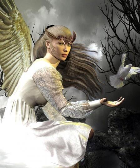 Bel ange et colombe