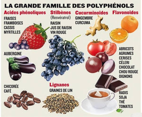 Tableau polyphenols 1